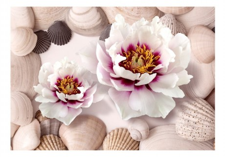 Fotomurale - Flowers and Shells