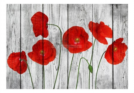Fotomurale - Tale of Red Poppies