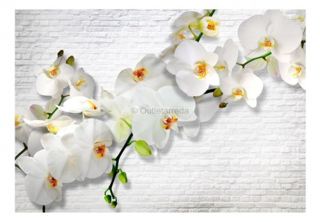 Fotomurale - The Urban Orchid