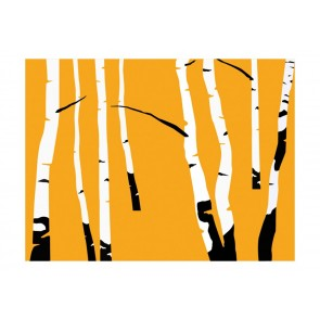 Fotomurale - Birches on the orange background