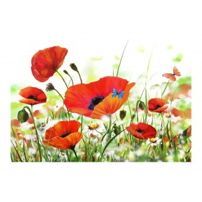 Fotomurale - Country poppies