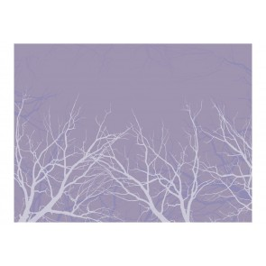 Fotomurale - Iced branches