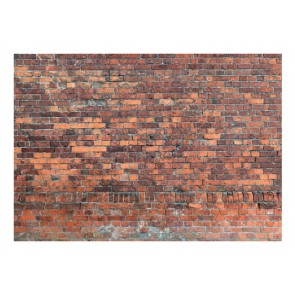 Fotomurale - Vintage Wall (Red Brick)