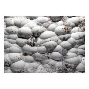 Fotomurale - White stones and moss