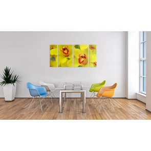 Quadro - Orchids - intensity of yellow color