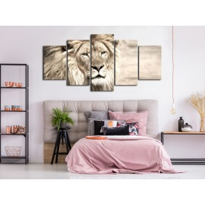 Quadro - The King of Beasts (5 Parts) Wide Beige