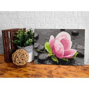 Quadro fai da te - Pink Flower and Stones